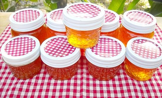 Florida Citrus Marmalade, canning, oranges, citrus recipes