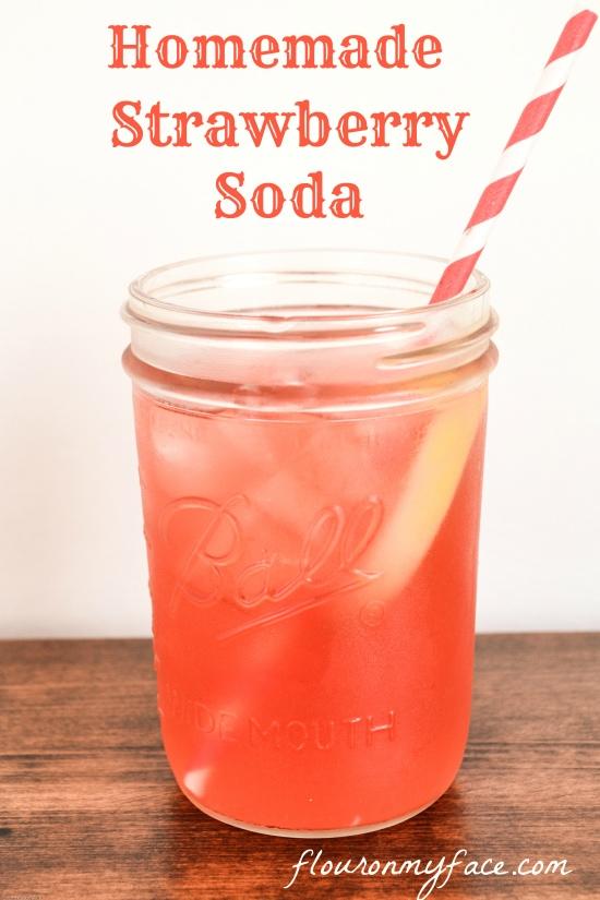 Simple Seltzer Water Drinks
