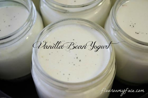 homemade, vanilla bean, yogurt