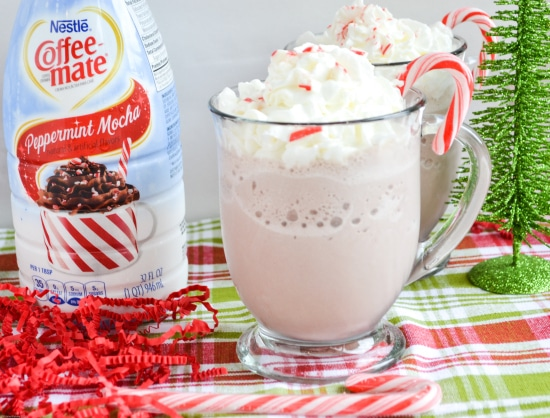 Peppermint Mocha Frozen Hot Chocolate Recipe